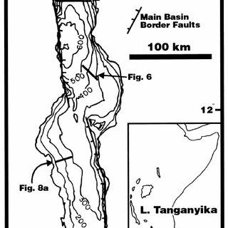 (PDF) Comparative sequence stratigraphy of low-latitude