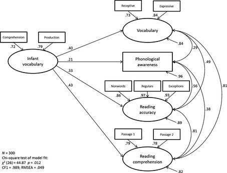 A structural equation model with infant vocabulary