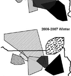 winter territories of northern range wolf packs canis lupus before 2005 2006 and after 2006 2007 the den attack that reduced the size of the slough  [ 850 x 1702 Pixel ]