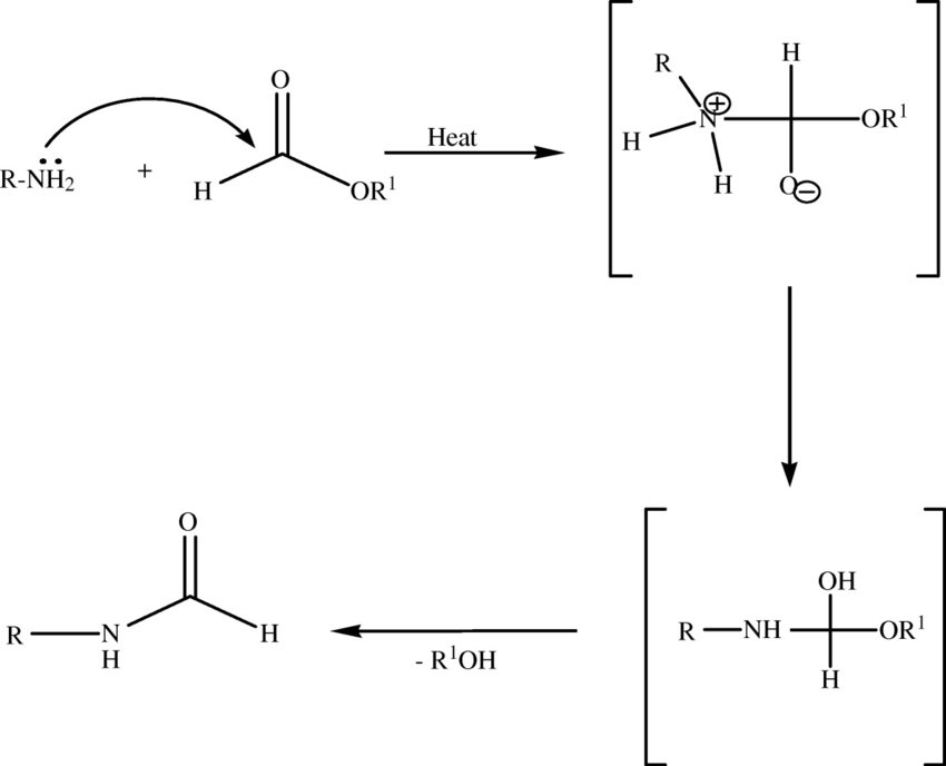 Proposed mechanism for N-formylation of amines using
