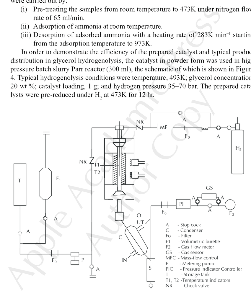 hight resolution of schematic of high pressure fixed bed continuous reactor