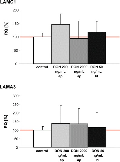 Analysis of the laminin expression on mRNA-level using to