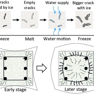 (PDF) Multi-scale simulation of freeze-thaw damage to RC