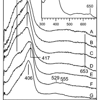 UV-visible absorption spectra of the reaction mixture
