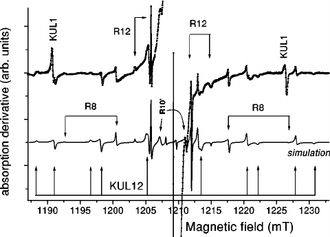 Hyperfine structure of the low-field 2D line of the R5