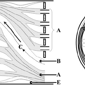 Flow path of streams through the shell of a cross-baffled