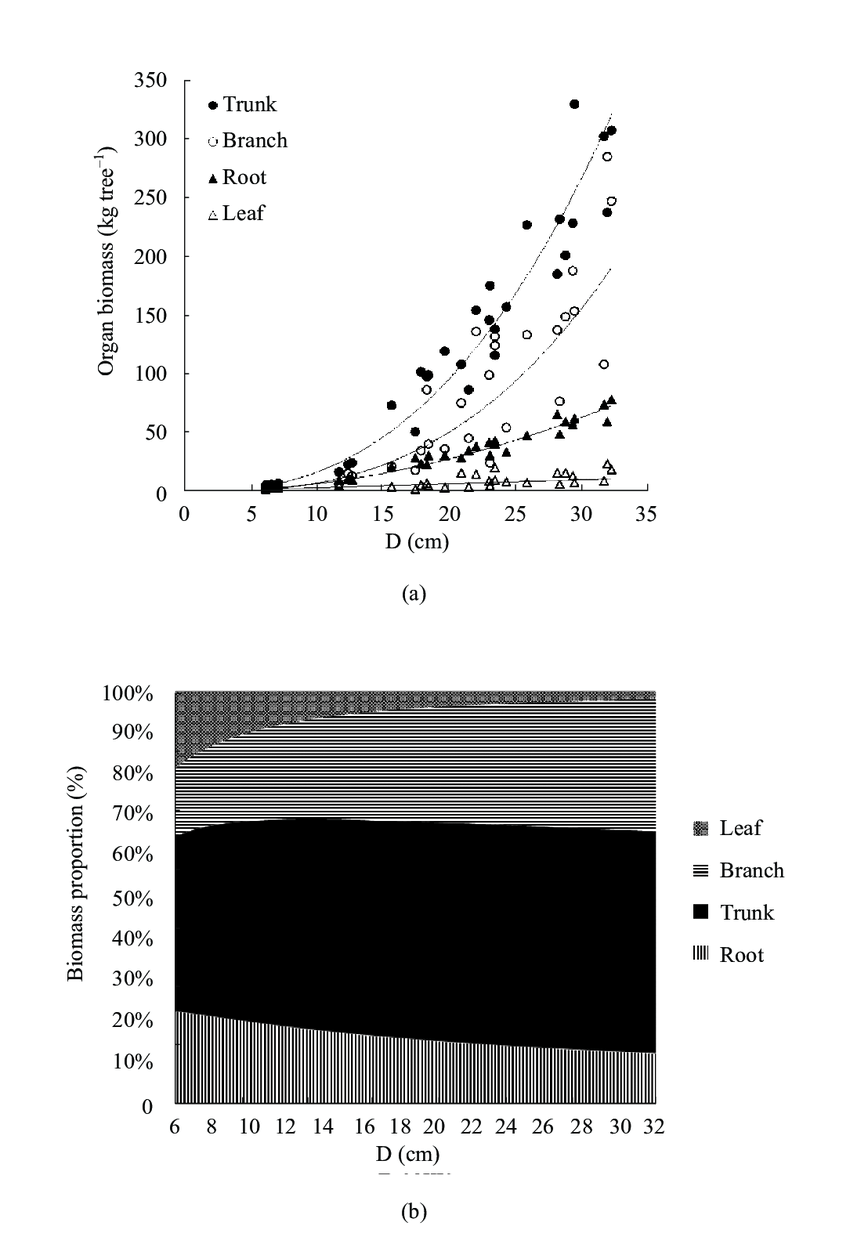 medium resolution of average biomass of leaf branch trunk and root for each tree diameter