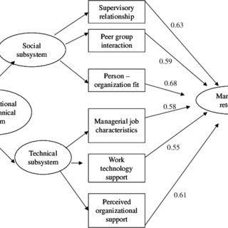 (PDF) Impact of organizational sociotechnical system on