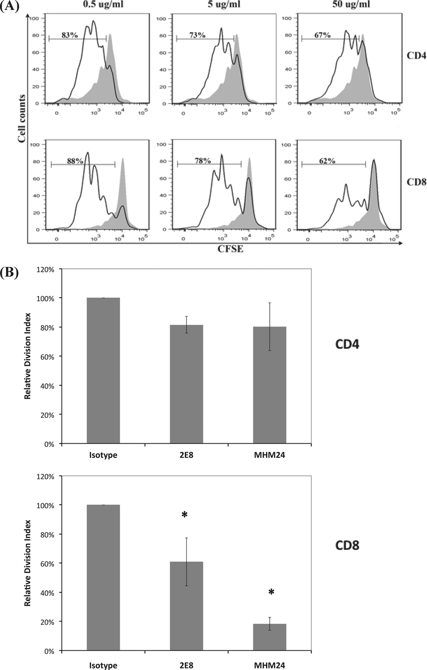Effect of 2E8 and MHM24 on human T cell proliferation
