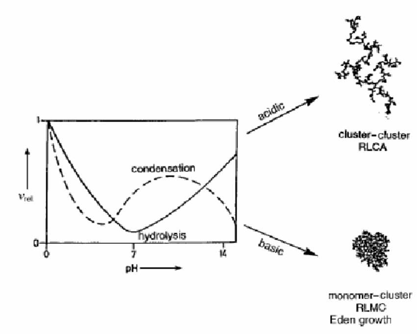 5. Dependency of the hydrolysis and condensation reaction
