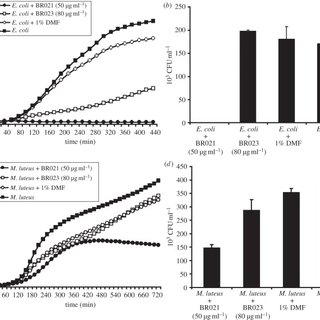 The two-layered immune defence system of H. axyridis. The