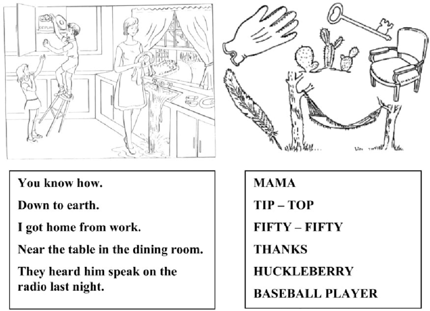 Pictorial diagram for testing items 9 (aphasia) and 10