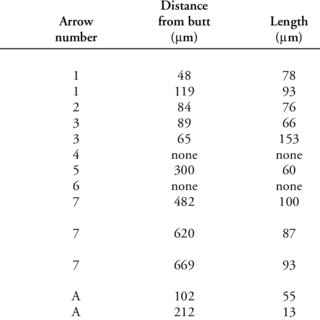 (PDF) The antiquity of bow-and-arrow technology: Evidence