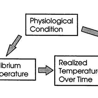 (PDF) An empirical mechanistic framework for heat-related