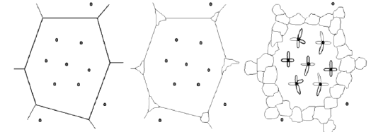 Schematic representation of the formation of acicular