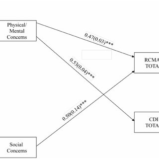 (PDF) Anxiety Sensitivity's Facets in Relation to Anxious