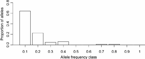 Histogram of allele frequency classes using a dataset of