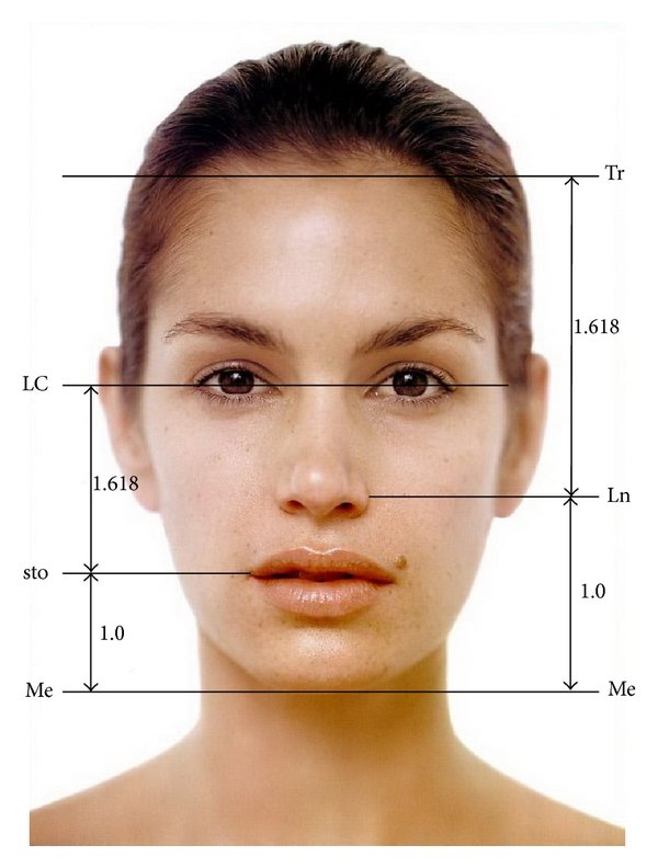 hight resolution of division of the face into vertical fifths