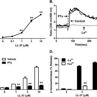 (PDF) Mas-related gene X2 (MrgX2) is a novel G protein