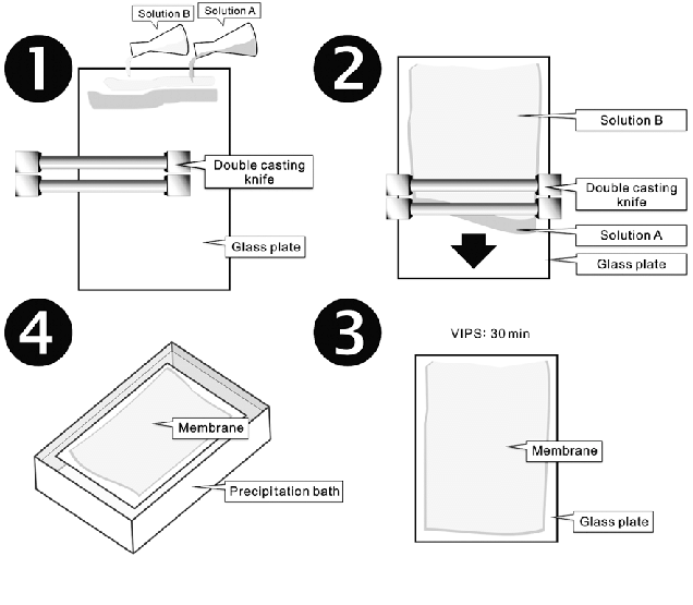 Schematic diagram of fabricating skin-free membranes using