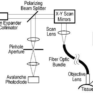 (PDF) Fiber optic confocal reflectance microscopy: A new