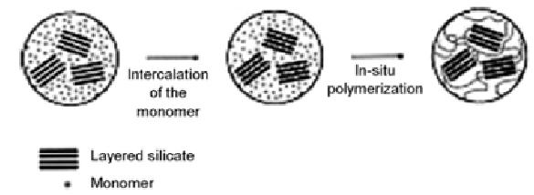 Schematic representation of a PLS nanocomposite obtained