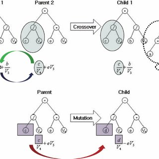 Basic structure and evolutionary principle of genetic