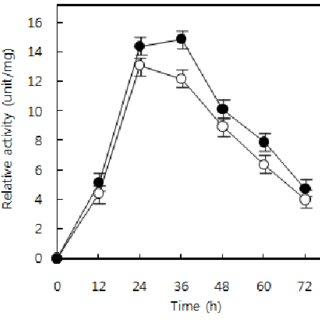 β-Galactosidase activity of SK-7 ( ) and YK-11