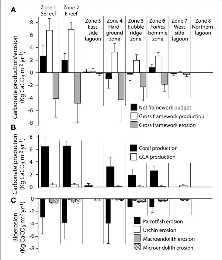 | Habitat-specific rates of framework carbonate production