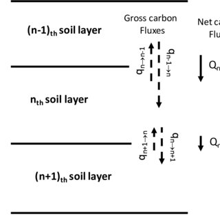 (PDF) Rates of soil mixing and associated carbon fluxes in