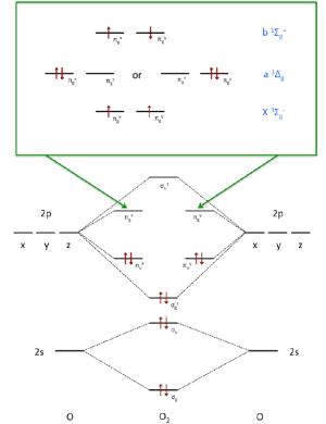Molecular orbital diagram for oxygen The occupation of the antibonding   Download Scientific