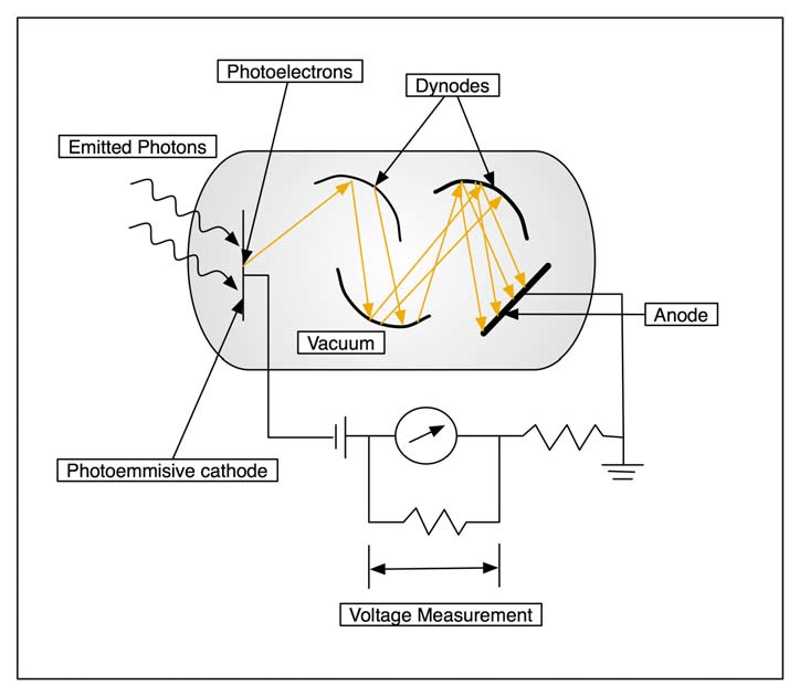 6: Photomultiplier tube (PMT) schematic. The emitted