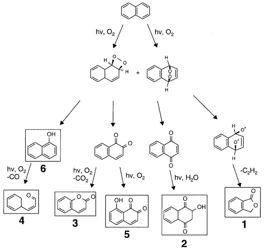 Proposed reaction scheme for photodegradation of