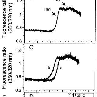 (PDF) Eur J Biochem 2002; 269, 4839-4851