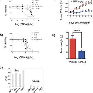 (PDF) Inhibition of Pten deficient Castration Resistant