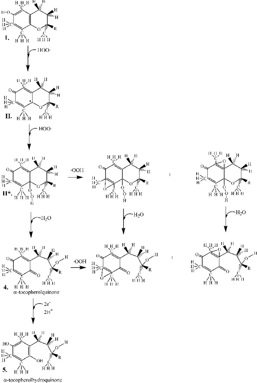 A schematic mechanistic representation of non-destructive