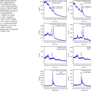 (PDF) Synthesis and Characterisation of a