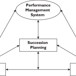 (PDF) Performance Management System as a Predictor of