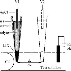 Non-invasive microelectrode measuring system. (a) Diagram