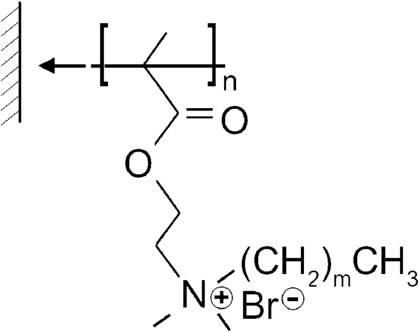 Schematic representation of quaternized with alkyl bromide