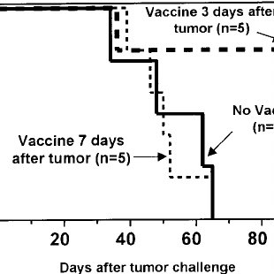 Tumor immunization of BMT recipients increases GVT