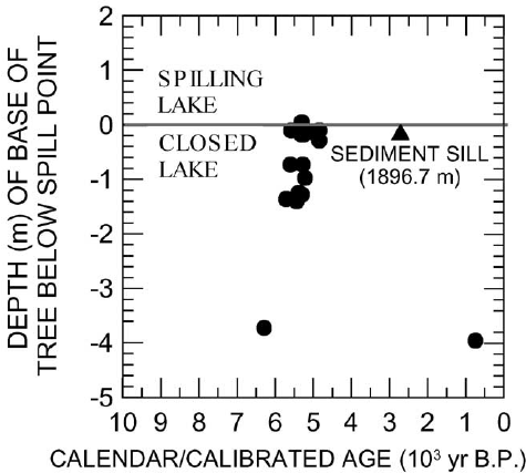 Age–depth relationships of radiocarbon-dated tree stumps