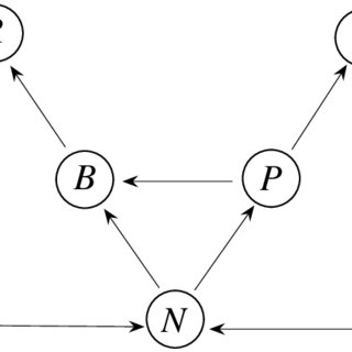 (PDF) Dynamical systems analysis of a two level trophic