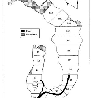 (PDF) Science versus grave desecration: The saga of Lake