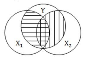 Venn diagrams of two possible predictor relationships