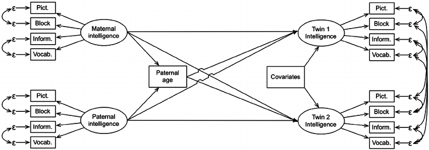 Simplified schematic of the structural equation models for