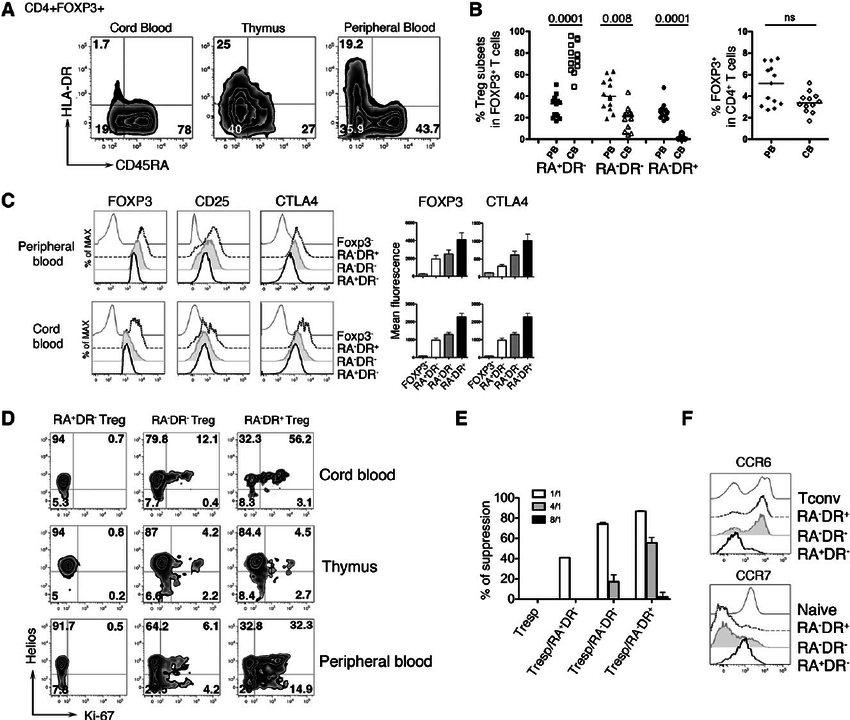 HLA-DR and CD45RA expression delineates 3 regulatory T