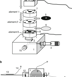 schematic drawing of the perspex body of the xylem pressure potential probe a  [ 720 x 1212 Pixel ]