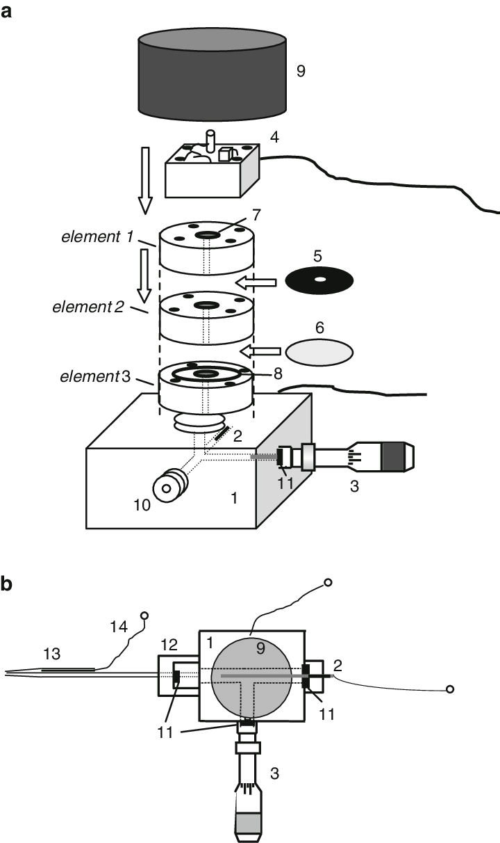 medium resolution of schematic drawing of the perspex body of the xylem pressure potential probe a