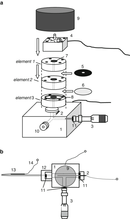 small resolution of schematic drawing of the perspex body of the xylem pressure potential probe a